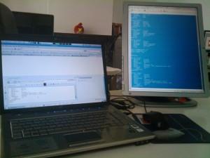 Nvidia dos monitores rotado